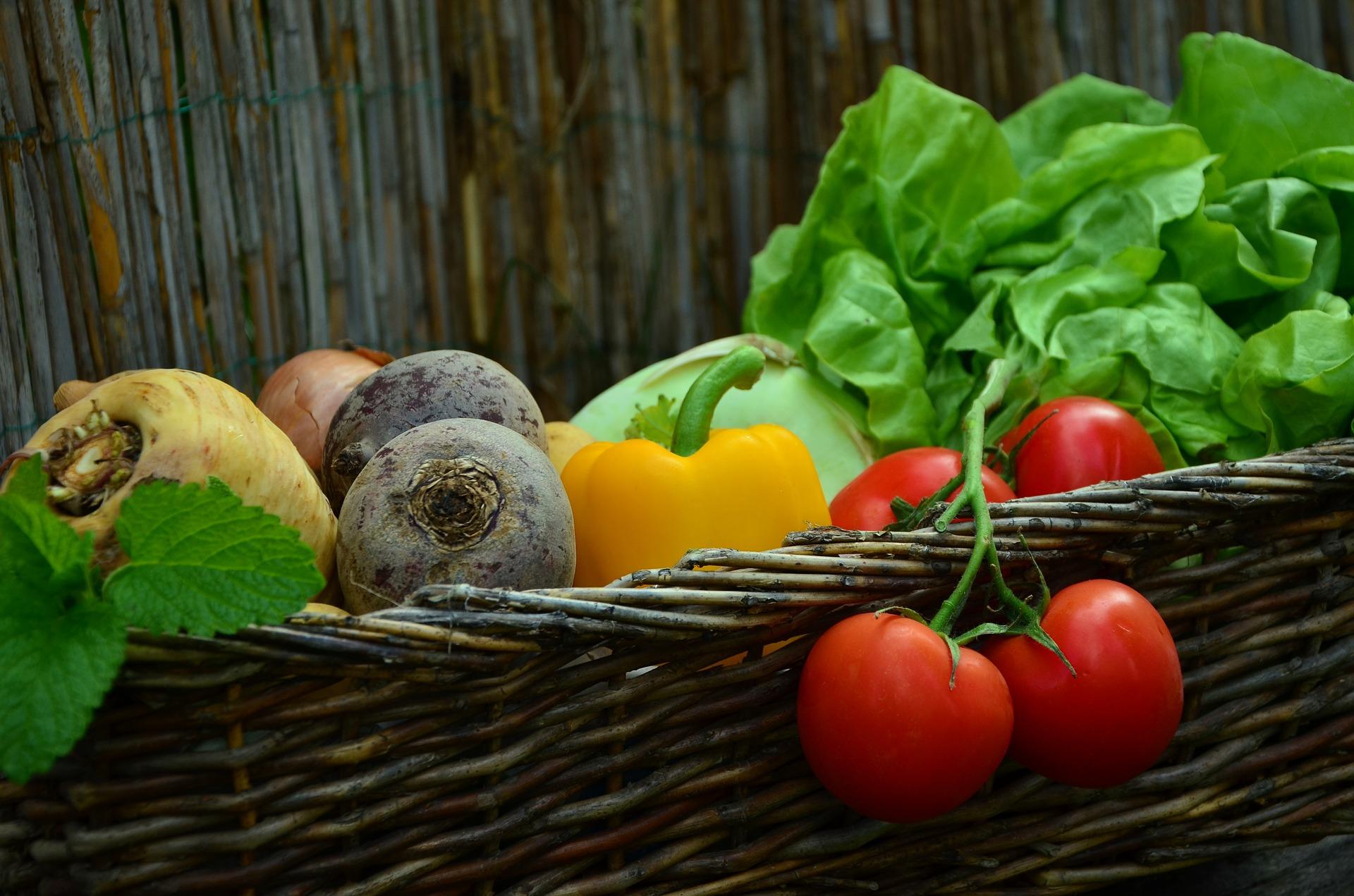 vegetables-752155_1920 (1)