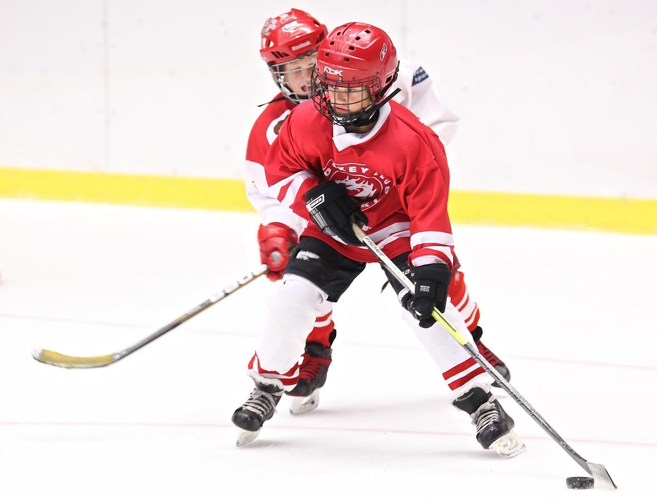 hockey-2274221_1280